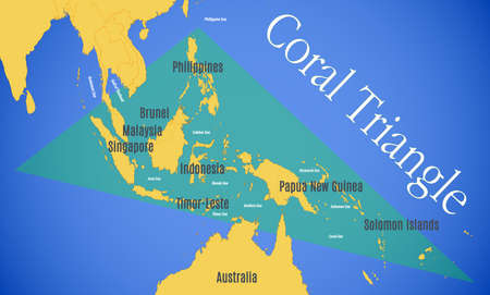 Vector map of the Coral Triangle.