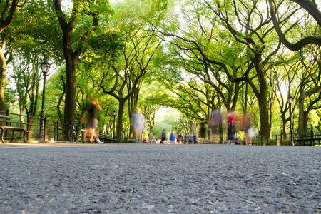 People walking and sitting on benches at the mall located in Central Park, Manhattan, New York Stock Photo