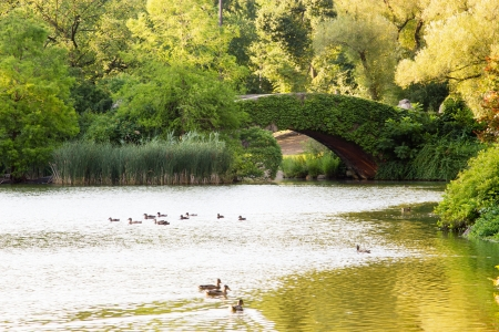 The Gapstow Bridge  over the pond located in Central Park South, upper Manhattan, New York City Stock Photo