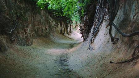 Full shot of loess ravine in Kazimierz Dolny, Poland. Amazing natural monument