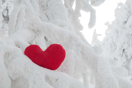 A lonely frozen heart on snow photo