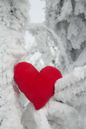 A heart on snow photo