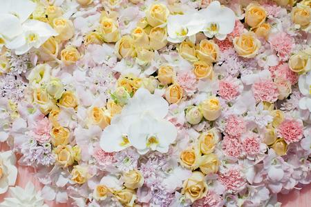 bunte Rosen Hintergrund - natürliche Textur der Liebe Lizenzfreie Bilder