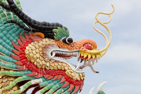 Chinese dragon photo