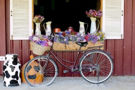 Window Decorated with Flowers in jugs and nice bicycle photo