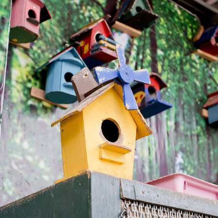 bird house: Old bird house