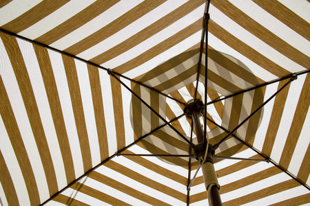 Under the canvas Umbrella  photo