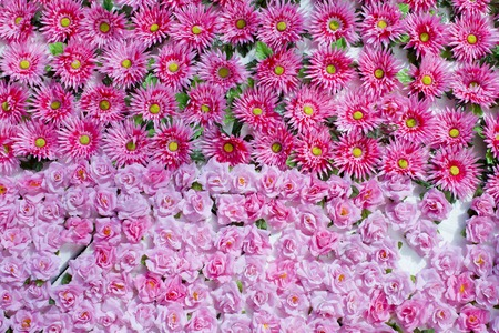 Plenty pink natural flowers seamless background photo