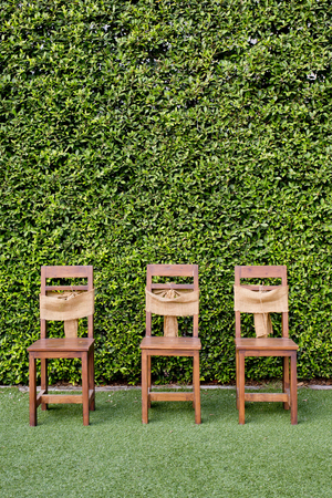 Decorate three wooden chairs against the green small tree wall. photo
