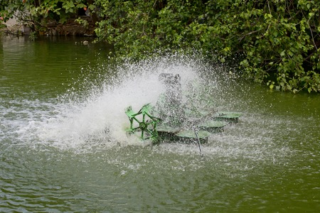 paddle wheel: Stop action of water and aerator turbine in pool
