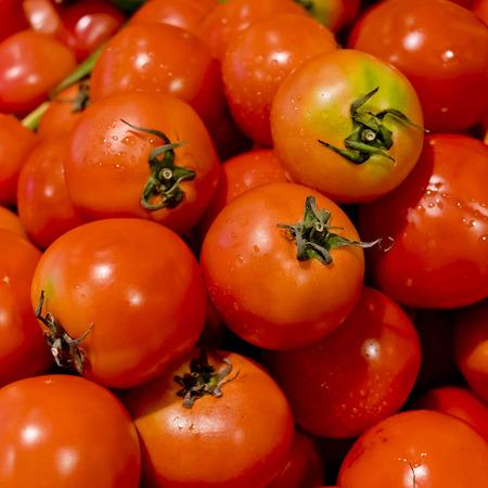 Fresh Tomatoes background