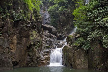 mahseer: Waterfall National Park, Chanthaburi, Thailand.