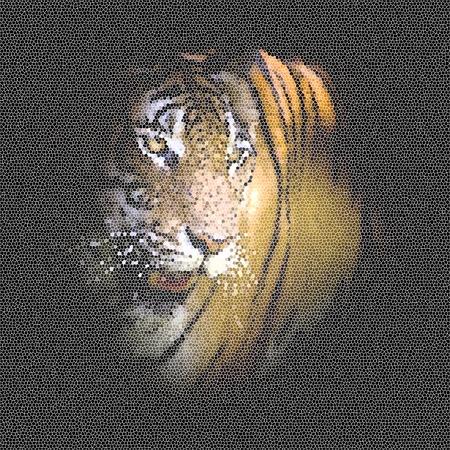 Tiger Design-Muster für Druck und Bildschirm
