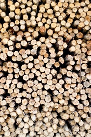 Schnittholz für den Winter Heizperiode vorbereitet Lizenzfreie Bilder