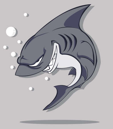 Shark  Vector Vector