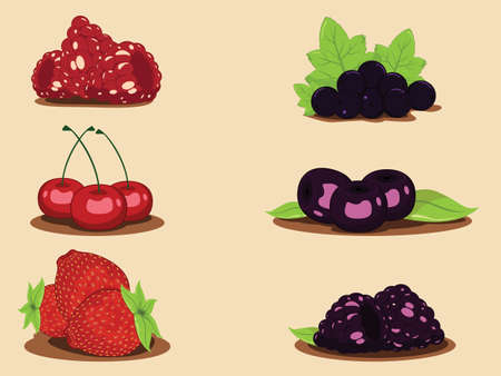 Collage from berries Vector