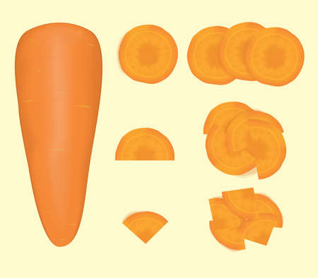 vegetable Carrot and carrot slice. food healthy and natural organic vector and illustration