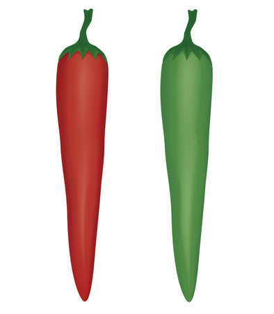 chili and spicy chili have color green chilies and red chilies. vegetable Asian food.vector and illustration