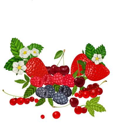 currant: Berries Set Vector Illustration. Strawberry, Blueberry, Cherry, Raspberry, Red currant.