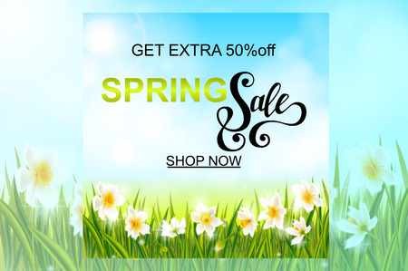 Spring sale banner, background with daffodil narcissus flowers, green grass, swallows, lettering and blue sky. Seasonal discount Illustration