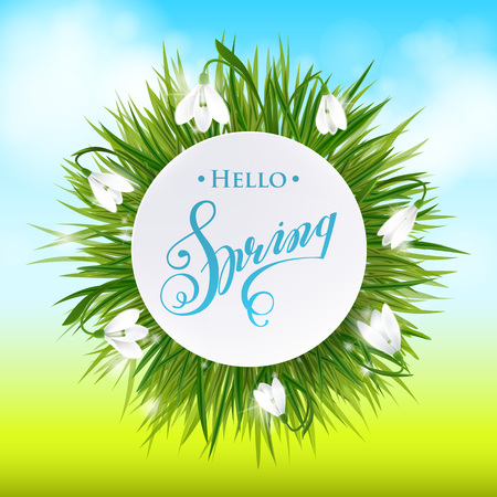 Round natural frame with grass and flowers. Lettering Hello Spring. Vector eps10