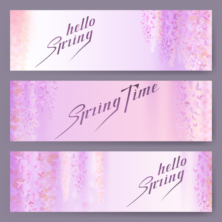 Spring background with blooming wisteria. Horizontal banner.