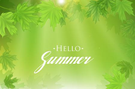 sun: Summer fresh green leaves with sun rays