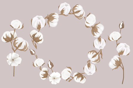 vector wreath of twigs and cotton flowers. Botanical illustrations. Greeting card.