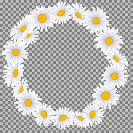 Guirnalda hermosa de la manzanilla en fondo beige con el lugar para su texto o imagen. Ilustración de vector para diseño gráfico. Foto de archivo - 86988387