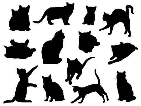 silueta de gato: los gatos