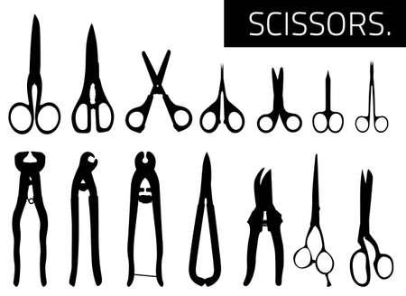 Scissors Stock Vector - 15572046