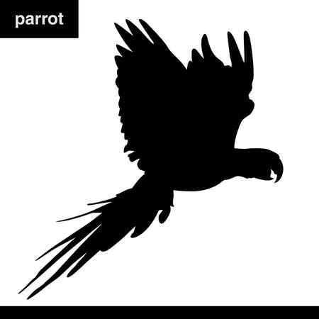Parrot Stock Vector - 15716583