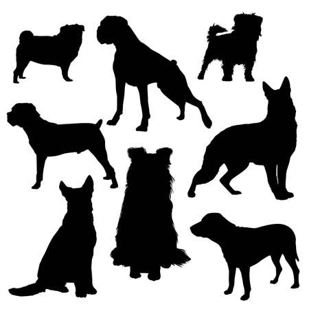 large group of animals: silhouettes of dogs of different breeds isolated on a white background Illustration