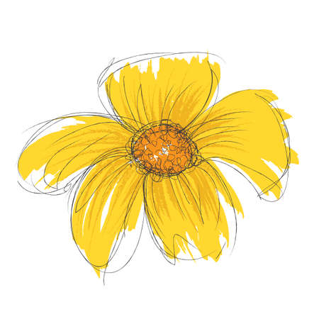 Vector drawn and painted flower Illustration