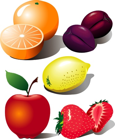 Set of vector fruits Vector