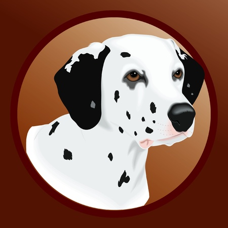 head protection: Vector Dog Illustration