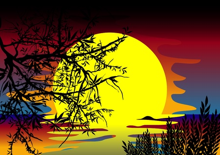 sunset lake: vector bright colorful sunset