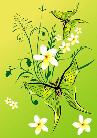 Abstract vector floral composition