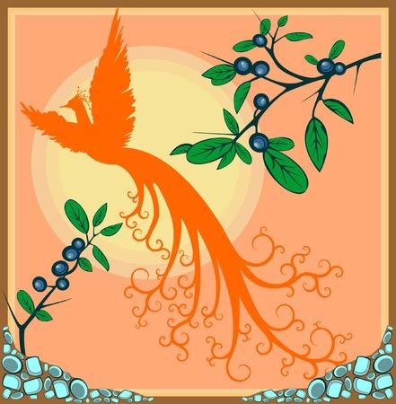 Vector illustration of decorative phoenix bird