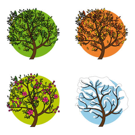 Set of four trees in different seasons, vector illustration.
