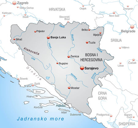 cartographer: Map of Bosnia and Herzegovina as an overview map in gray