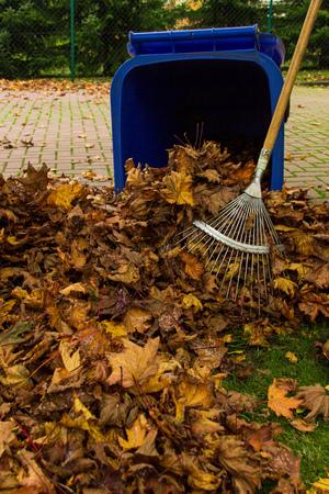 garden waste: foliage work Stock Photo