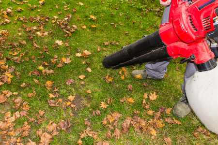 naptime: foliage work Stock Photo