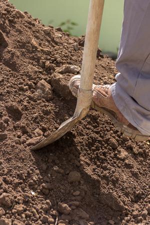 shoveling earth