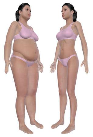 角度のついた: ダイエットや運動分離固体白い背景の上に前に、と後の角度の太りすぎの女性と健康的な体重の後女性の正面図