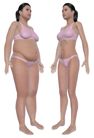 Before and after angled front view illustration of a overweight female and a healthy weight female after dieting and exercising  Isolated on a solid white background