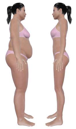 pancia grassa: Prima e dopo illustrazione vista laterale di una donna sovrappeso e una femmina di peso sano dopo la dieta e l'esercizio isolato su uno sfondo bianco solido
