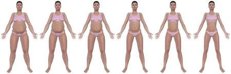 Una ilustración de una vista frontal de una mujer obesa Foto de archivo - 15637701