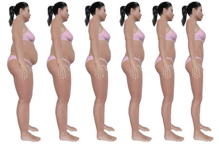 fat to thin: A side view illustration of a obese woman Stock Photo