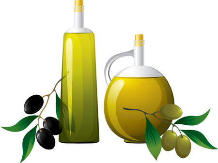 salads: Bottle of oil and branch of olive  Illustration